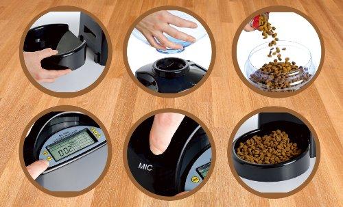 Alimentador automático Perfect Pet Dinner – Mis Mascotas